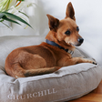 Churchill  — Linen Dog Bed Pattern