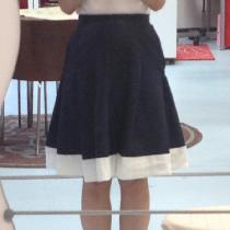 Navy and White Pleated Skirt in Linen...
