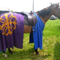 ~14th Century Caparison recreated for equestrian activities in the Society for Creative Anachron...